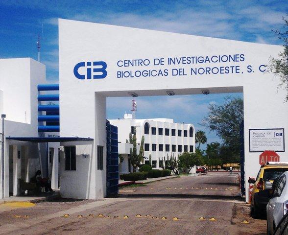 Entrada al Centro de Investigaciones Biológicas del Noroeste (CIBNOR-México)